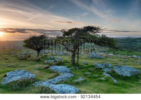 Coombestone Tor On Dartmoor