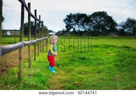 Little Boy Playing On A Farm
