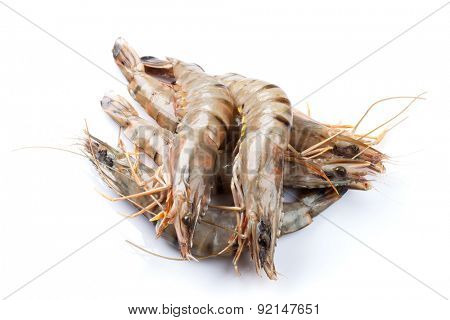 Fresh raw tiger prawns. Isolated on white background