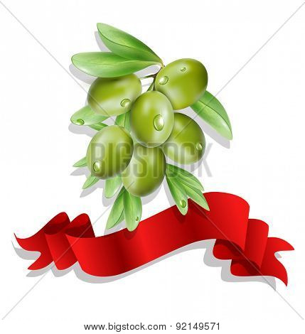 olive branch with red ribbon on white background ( isolated)