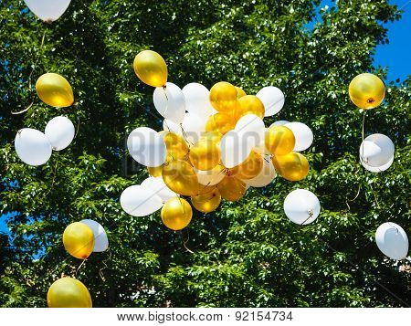Bunch Of Balloons Floating In Air