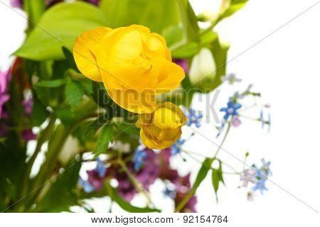 Yellow Trollius Flowers In Bouquet Close Up