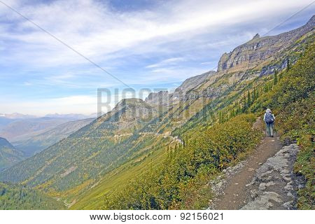 Hiker Traveling On A Remote Alpine Trail
