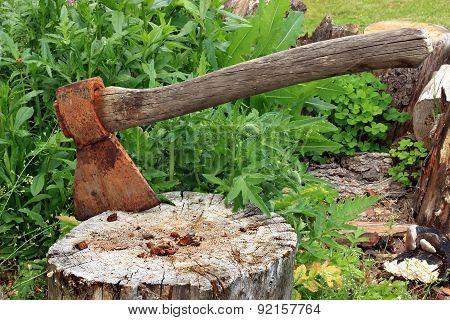 Axe in a tree stump