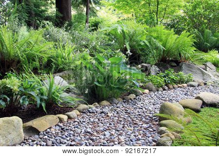 Woodland shade garden path, lined with Hosta and fern.