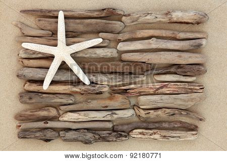 Starfish and driftwood abstract on a sand beach.