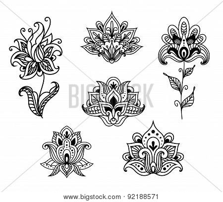 Outline floral paisley design elements