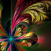 picture of asymmetric  - Diagonal asymmetrical multicolor fractal tracery - JPG