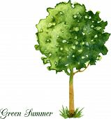 picture of tree trim  - Watercolor hand painted card with flowering green tree - JPG