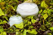 image of fill  - Organic skin care products - JPG