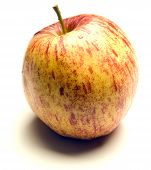 Jonagold Apple On White Background