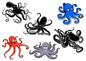 stock photo of cartoon character  - Colorful and black cartoon octopus characters - JPG
