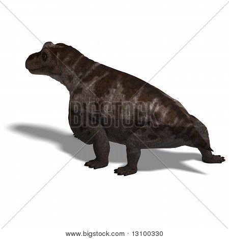 Dinosaur Keratocephalus