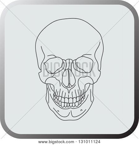 Skull icon. Skull icon art. Skull icon eps. Skull icon Image. Skull icon logo. Skull icon sign. Skull icon flat. Skull icon design. Skull icon vector.
