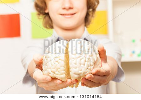 Smiling 13 years old boy holding cerebrum model at his hands