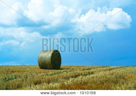 geernteter Feld und Gewitterhimmel