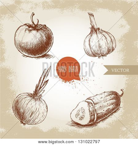 Set of hand drawn vegetables. Tomato onion sliced cucumber and garlic. Sketch style ecological food illustration.