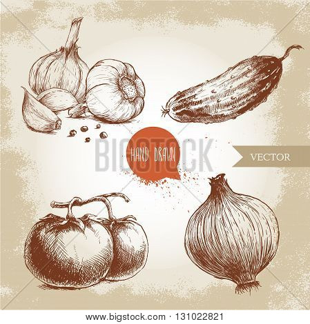 Set of hand drawn vegetables. Tomatoes onion cucumber and garlics. Sketch style ecological food illustration.