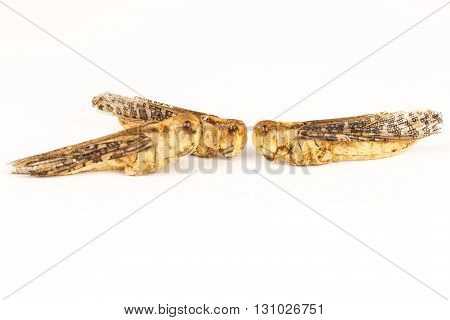 three Fried locusts insects,on with table and background, aperitif food