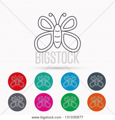 Butterfly icon. Flying lepidoptera sign. Dreaming symbol. Linear icons in circles on white background.