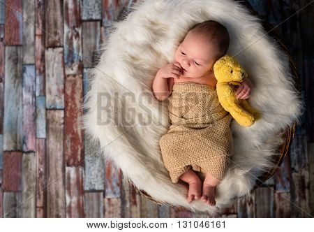 Adorable little newborn baby hugging  his first teddy bear