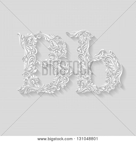 Handsomely decorated letter B in upper and lower case on gray
