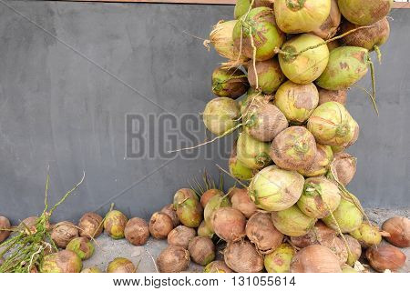 Pile of raw coconuts with bunches ,Thailand