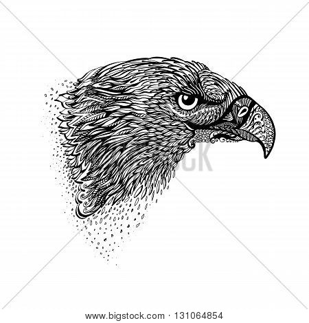 Stylized Head of Eagle. Hand Drawn Doodle Illustration in Black on White
