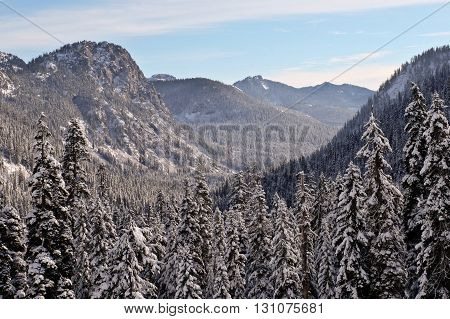 Snoqualmie Pass in Winter, Mt Baker Snoqualmie National Forest Washington