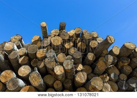 Pile of wood logs ready for winter. Stack of firewood as background.