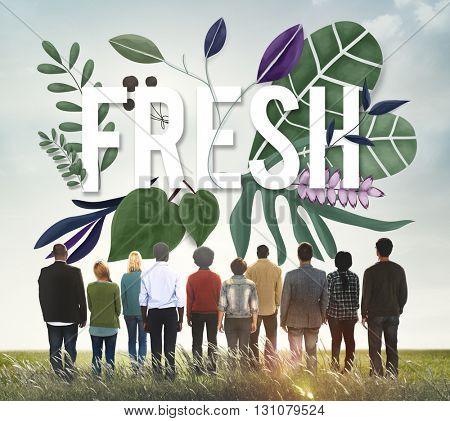 Fresh Leaves Green Healthy Organic Concept
