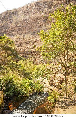 Moremi Gorge Botswana