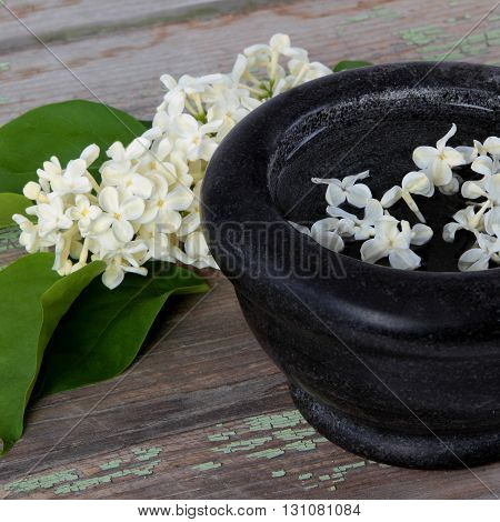 Stone bowl with a bouquet of white lilac spring flowers on wooden background