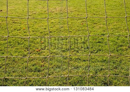 Detail Of Yellow Blue Crossed Soccer Nets, Soccer Football In Goal Net With Grass On Playground