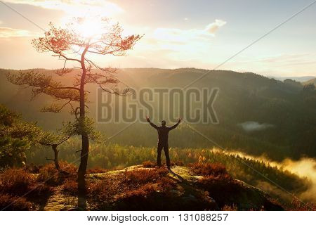 Sunny Morning. Happy Hiker With Hands In The Air Stand On Rock Bellow Pine Tree. Misty And Foggy Mor