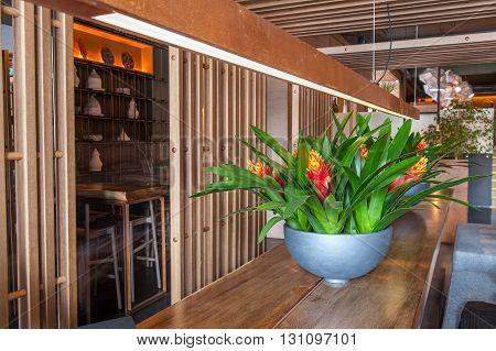 Elegant modern restaurant. Long wooden table with flowerpot on it