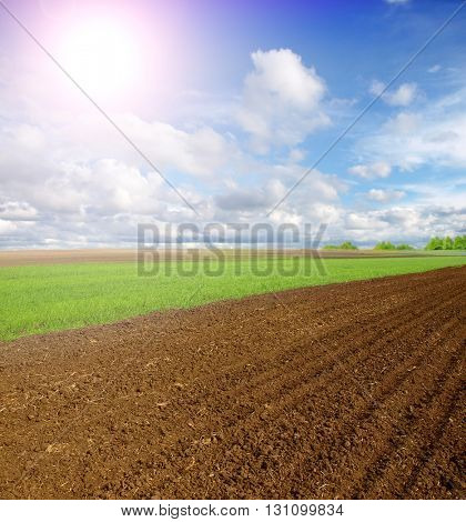 Beautiful spring landscape with plowed field under blue sky with clouds