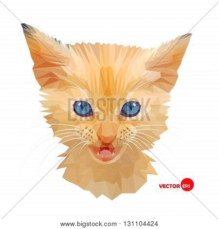 Red Cat face with blue eyes portrait made in polygonal style. Kitten face head. Cats in the low poly for design T-shirt print. Pet Cat. Portrait stylized kitten's face on the white background.
