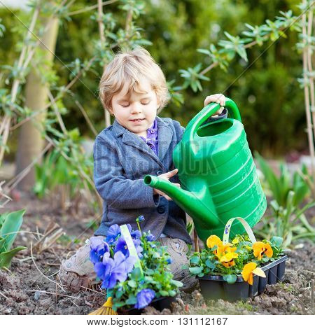 Beautiful little kid boy helping with gardening in spring garden. Funny child planting flowers. Family, spring, planting concept.