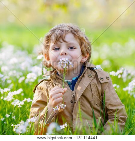 Happy little blond toddler boy in spring garden with blooming flowers, outdoors. Funny kid in colorful clothes having fun in nature.