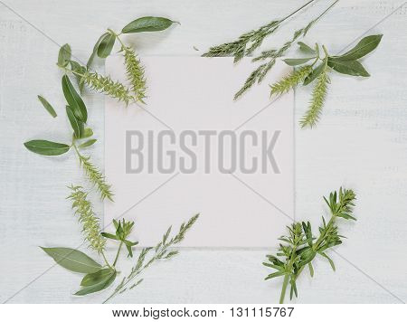 White wedding or family photo album frame with fresh branches and herbs on light wooden background; top view flat lay overhead view
