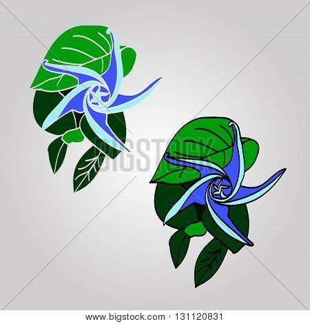 A collection of graphic drawings. Simple picture of plant flower and green leaves. Flower with spiraled petals. Vector illustration on light background