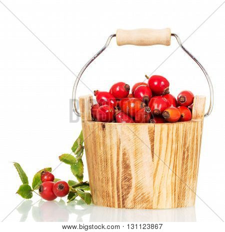 Wooden bucket with fresh berries wild rose isolated on white background.