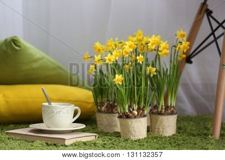 Blooming narcissus flowers with cup of tea on green carpet, indoors