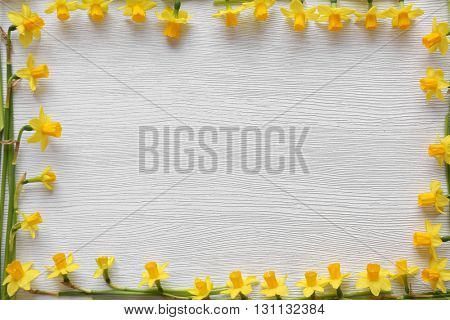 Frame of fresh narcissus flowers on wooden background