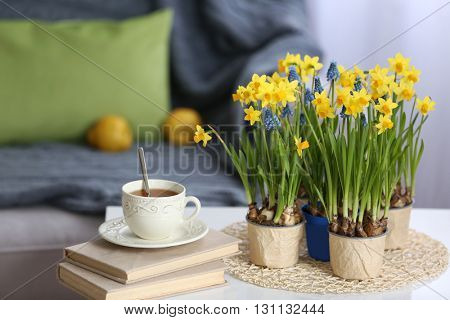 Blooming narcissus flowers with books and cup of tea on table, indoors