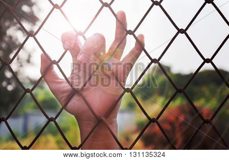 Lady Or Girl Hand Catching Iron Bar With Lens Flare, Imprison Or Need Freedom Feeling