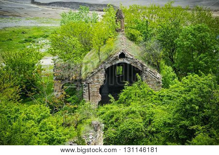 This is a photo of the Abandoned overgrown house