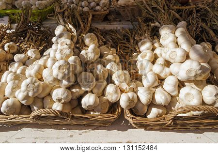 Organic garlic for sale at outdoor Farmers Market