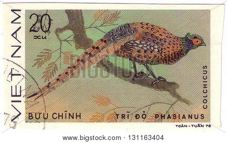 Vietnam - Circa 1978 : A Stamp Printed By Vietnam Shows Bird An Colhicus, From The Series Ornamental